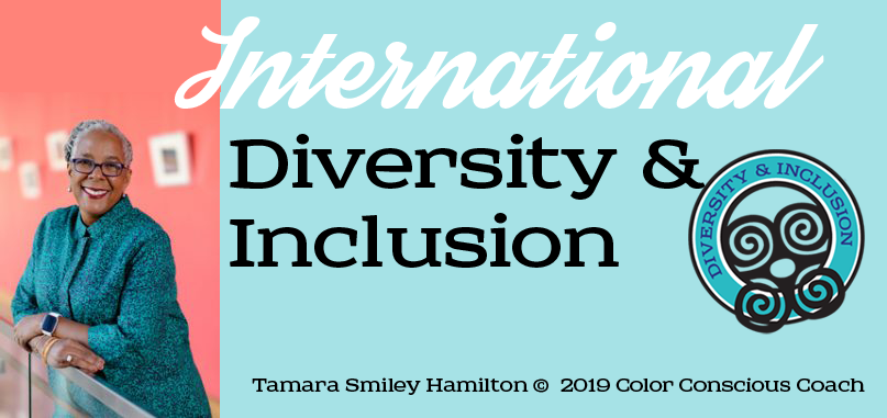 Internaitional diversity and inclusion facilitator